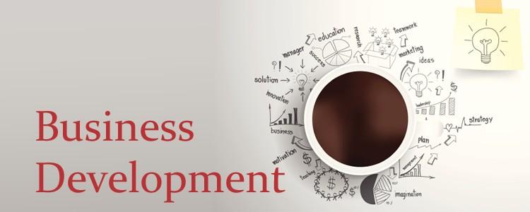 businessdevelopment